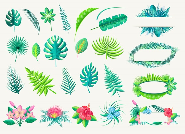 Tropical leaves and exotic flowers vector collection on white