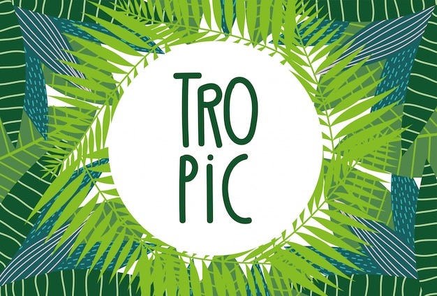 Tropical leaves exotic palm foliage layout template