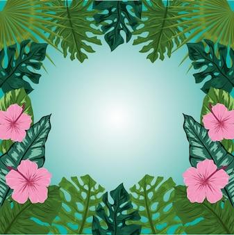 熱帯の葉の花がフレームをぼかす