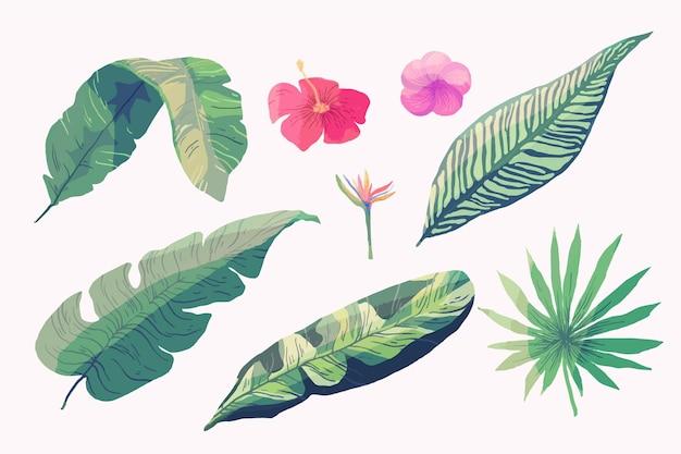 Foglie e fiori tropicali isolati sulla carta da parati bianca