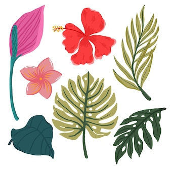 Tropical leaves and flowers set