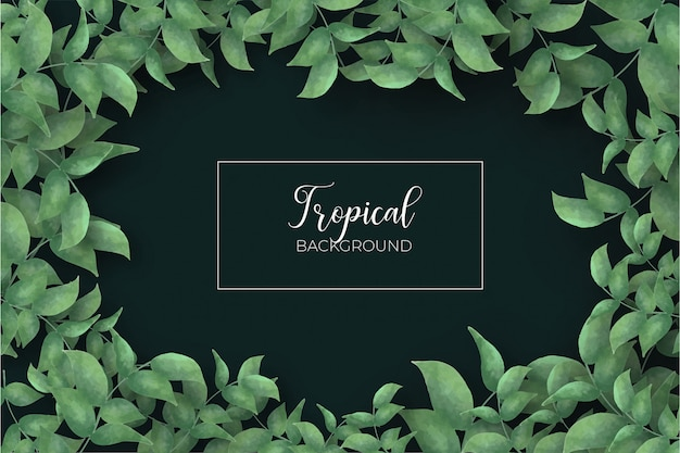 Tropical leaves frame background
