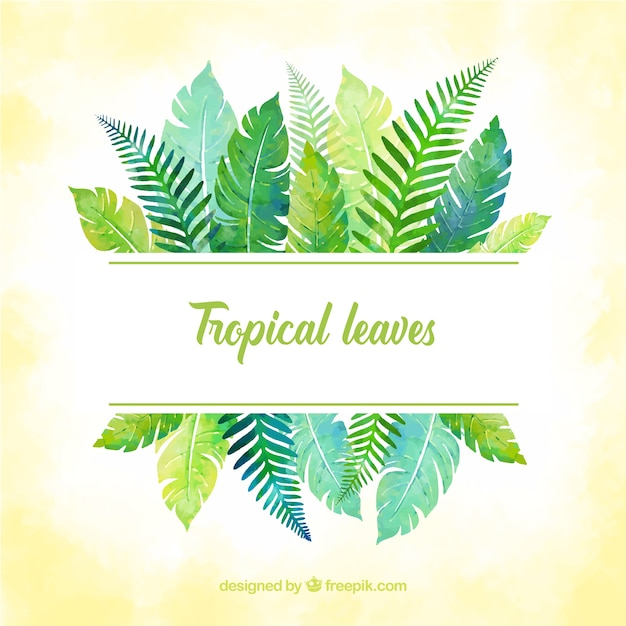 Free Tropical Leaves Frame With Watercolor Style Svg Dxf Eps Png New Svg File Scalable Vector Graphics Find & download free graphic resources for tropical leaves. new svg file scalable vector graphics