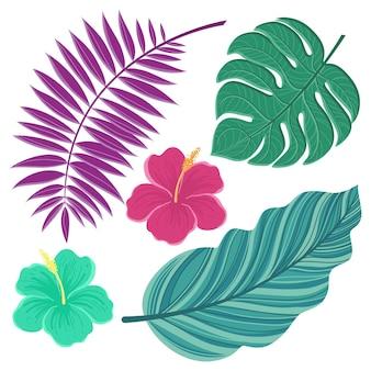 熱帯の葉。手描きの孤立した葉と花のイラスト