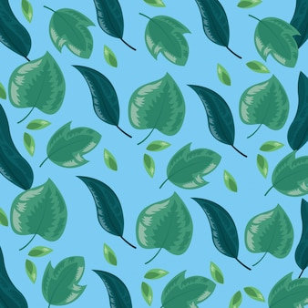 Tropical leaves illustration