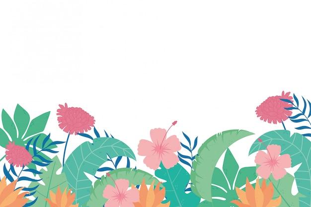 熱帯の葉のジャングルのエキゾチックな組成の花、自然の背景