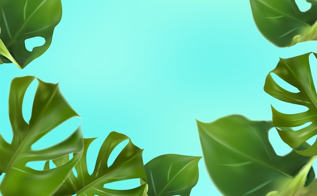 青い背景に熱帯の葉、野生で育つスプリットリーフの葉を持つ熱帯の葉のモンステラ。