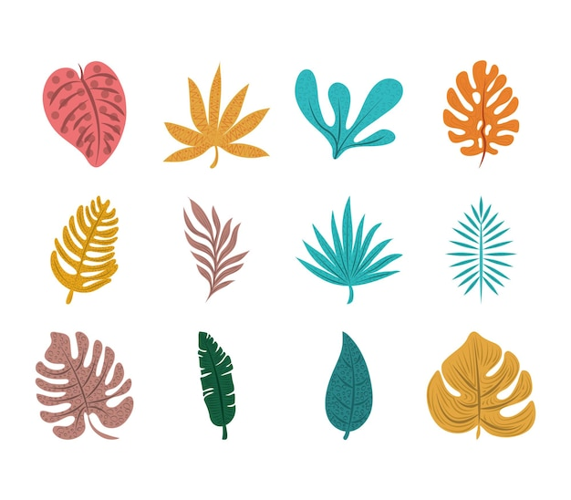 열대 잎 세트