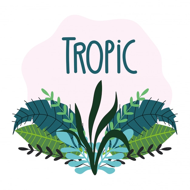 Тропические листья текстуры экзотическая листва рисованной надписи