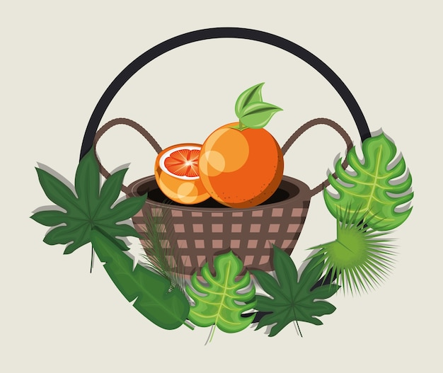 Tropical leaves with basket with orange