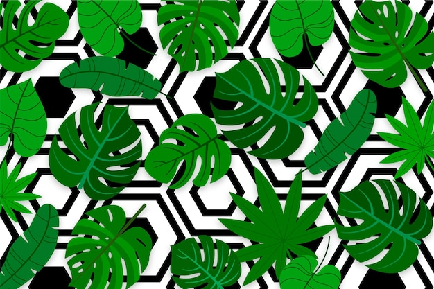 Tropical leaves with geometric background