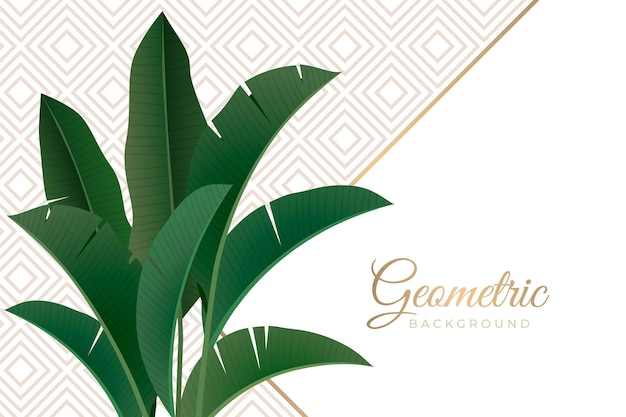 Tropical leaves with geometrical background