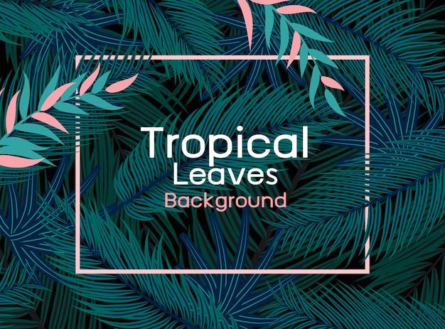 Tropical leaves with pink line frame on black background vector illustration