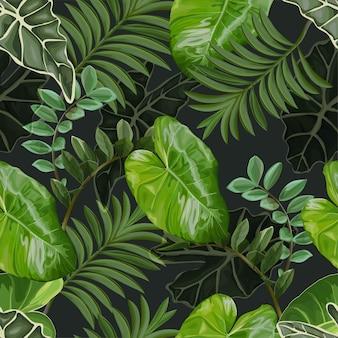 열대 나뭇잎