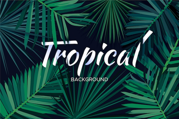 Tropical lettering concept