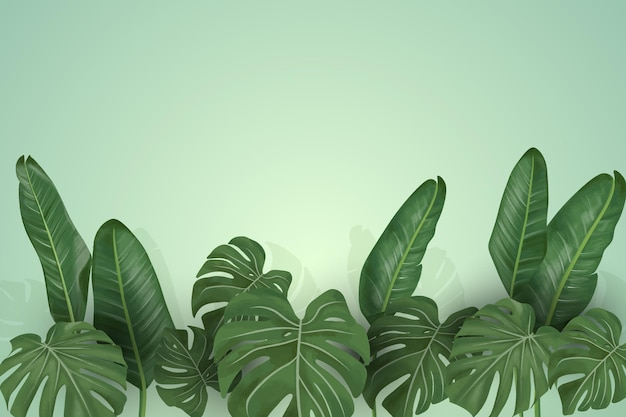 Tropical mural wallpaper with leaves