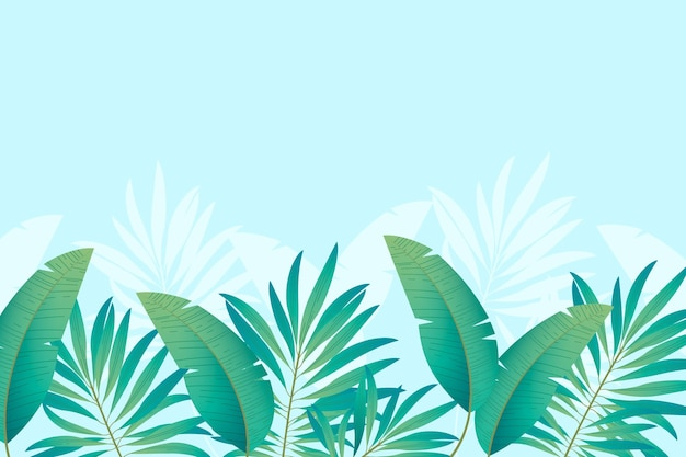 熱帯壁画壁紙