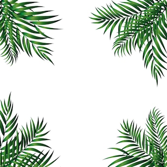 Tropical natural green palm.  illustration