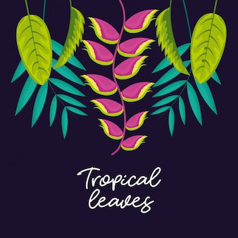 Tropical natural leaves
