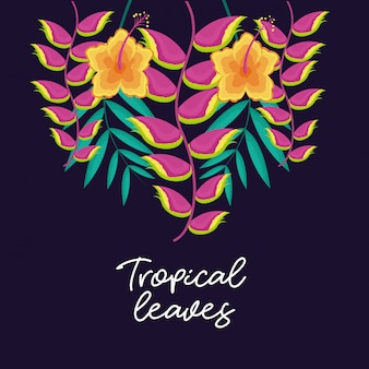 Tropical natural leaves