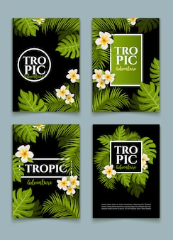 Tropical palm flyer leaves background set