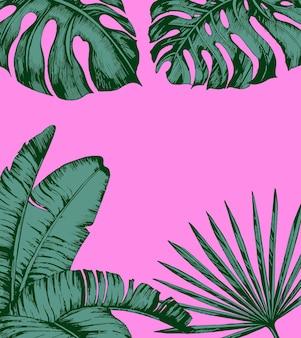 분홍색 배경에 열 대 야자수 잎 최소한의 자연 여름 개념 여름 열 대 잎