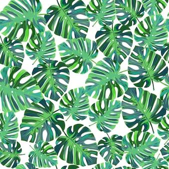 Тропические пальмовые листья