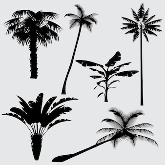 Tropical palm tree vector silhouettes