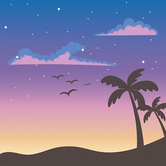 Tropical palm trees and birds at sunset