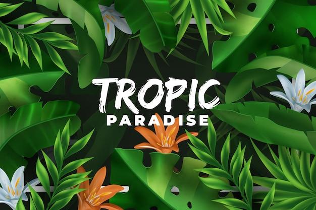 熱帯の楽園ヤシの葉の背景