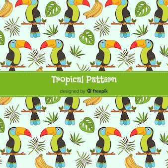 Tropical pattern background with toucans