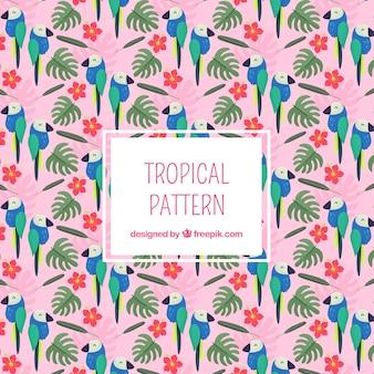 Тропический узор с листьями и туканами