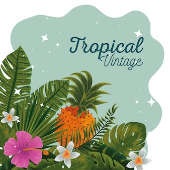 Tropical pineapples with flowers plants and leaves