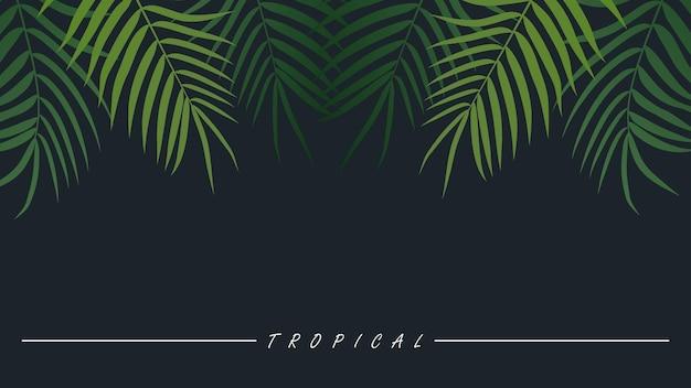 Фон тропических растений с пальмовыми листьями