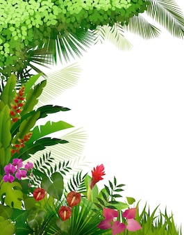 Tropical plant foliage on isolated background
