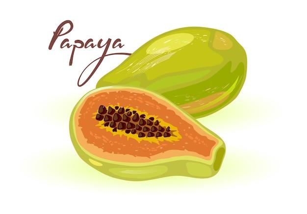 열대 식물 파파야 전체 및 절반. 주황색 과육과 수많은 검은 씨앗을 가진 이국적인 과일.