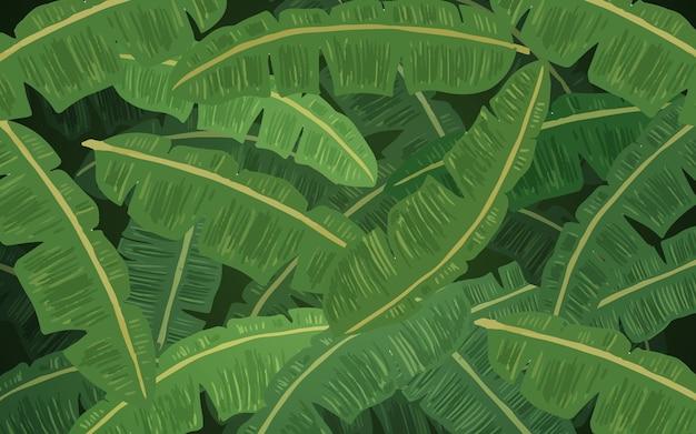 바나나 잎과 열 대 식물