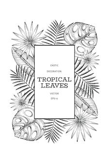 熱帯植物のバナーデザイン。手描きの熱帯夏のエキゾチックな葉のイラスト。ジャングルの葉、ヤシの葉の刻印スタイル。ヴィンテージの背景デザイン