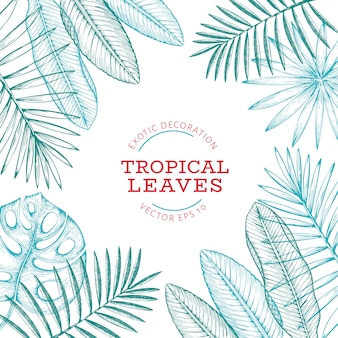 Tropical plants banner design