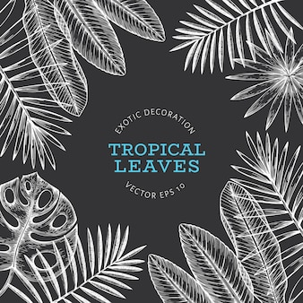 Tropical plants banner design.