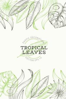 Tropical plants banner . hand drawn tropical summer exotic leaves illustration. jungle leaves, palm leaves engraved style.