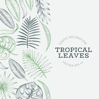 Tropical plants banner.