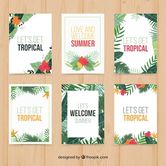 Tropical plants card collection