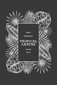Tropical plants frame design. hand drawn tropical summer exotic leaves illustration on chalk board. jungle leaves, palm leaves engraved style.