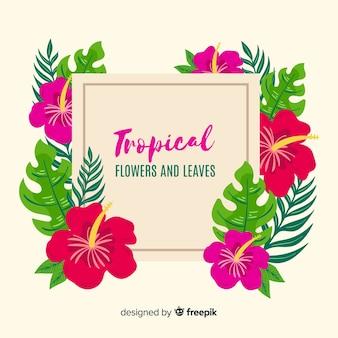 Tropical plants wreath background