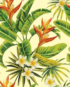 Тропическая плюмерия экзотические цветы шаблон