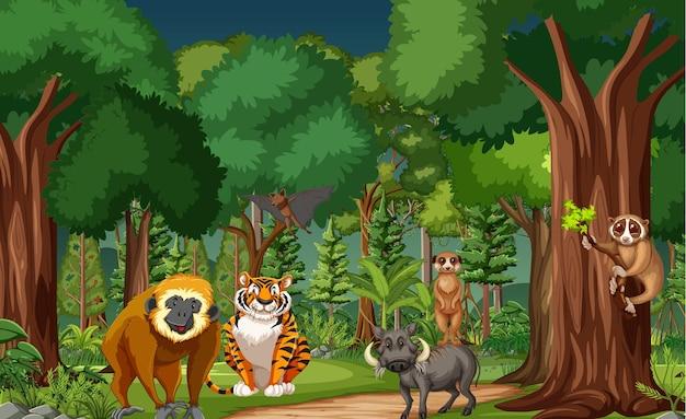 Сцена тропического леса с различными дикими животными