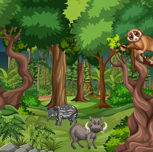 さまざまな野生動物が生息する熱帯雨林のシーン Premiumベクター
