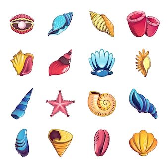 Tropical sea shell icons set