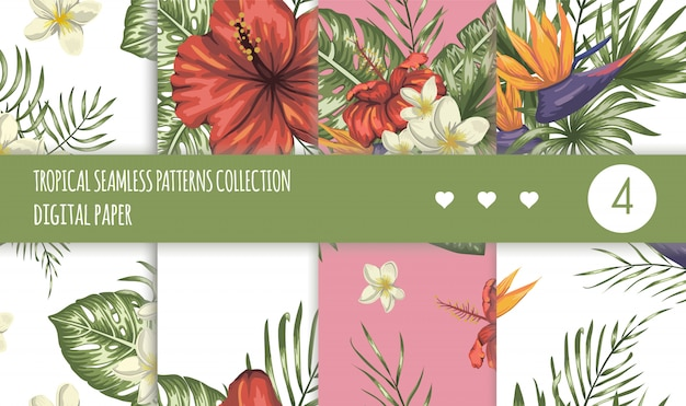 Tropical seamless patterns collection. summer or spring repeat tropic backdrops set. trendy exotic jungle ornaments.
